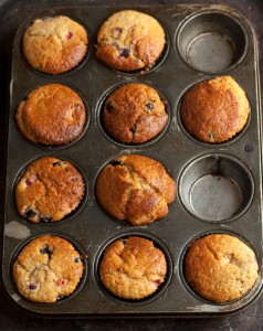 apricot and blueberry muffins