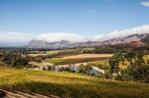 views at the top of Klein Constantia Wine Estate