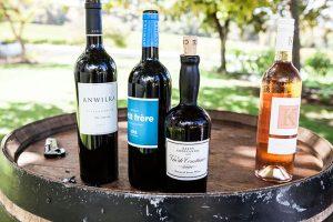 Klein Constantia Wine Estate