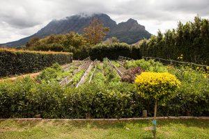 Delaire Graff Estate, Stellenbosch