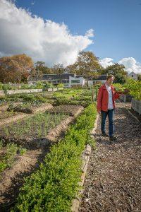 Christiaan Campbell from Boschendal garden, Boschendal Farm, Franschhoek South Africa