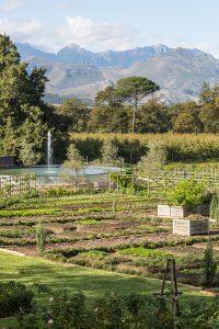 Boschendal garden, Boschendal Farm, Franschhoek South Africa