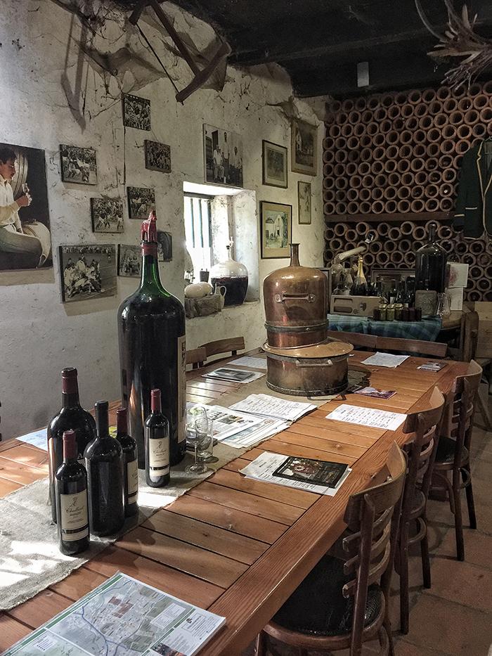 Annandale, Wineflies Wine Tour to Stellenbosch