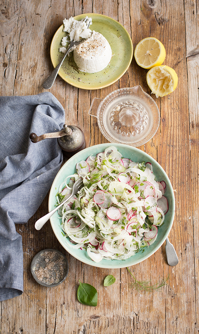 fennel, radish & mint salad with lemon & ricotta