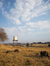 Visit Brahman Hills in the KZN Midlands