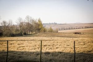 Visit the KZN Midlands, South Africa