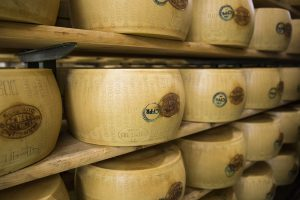 A visit to a Parmigiano Reggiano factory in Italy and seeing how its made