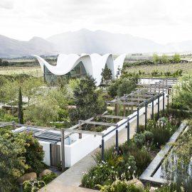 bosjes opens their tea garden