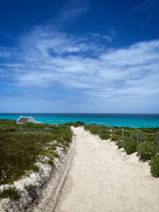 Visit the De Hoop Collection at De Hoop Nature Reserve